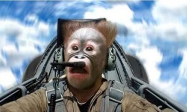 Има ли пилот в самолета monkey business
